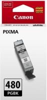 Картридж оригинальный Canon PGI-480 PGBK черный пигмент